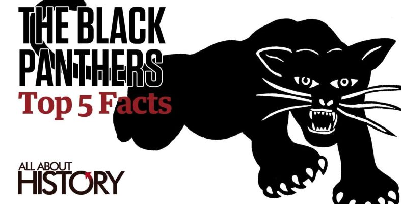 an introduction to the origins and the history of the black panther party