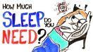 Sleep - Sleep Quantity