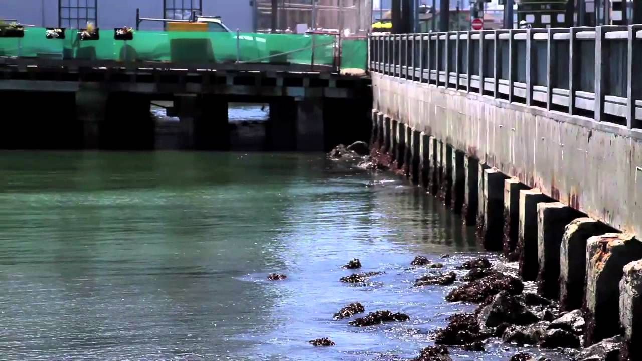 Sea Level Rise - San Francisco Bay