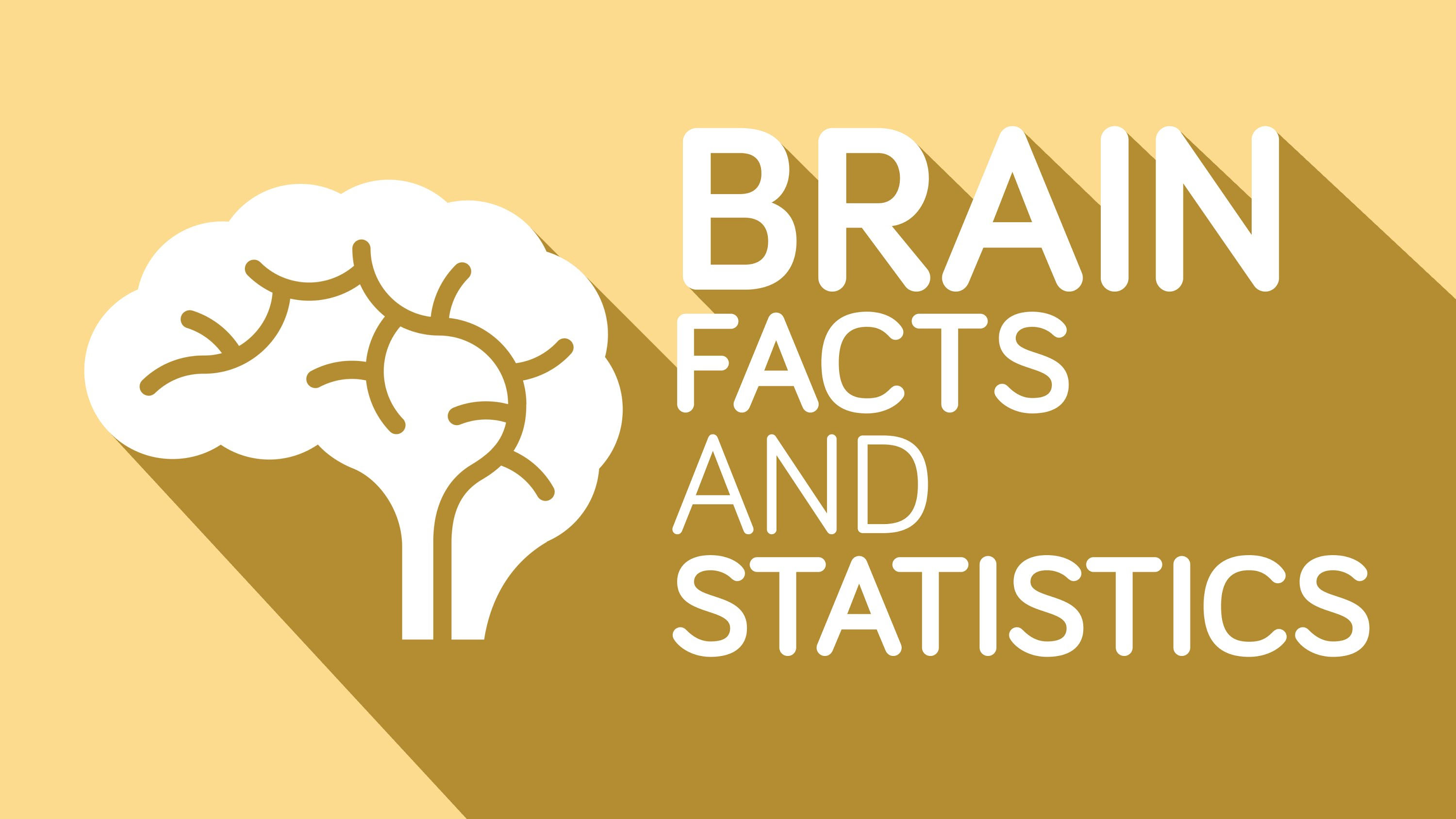 Brain - Facts