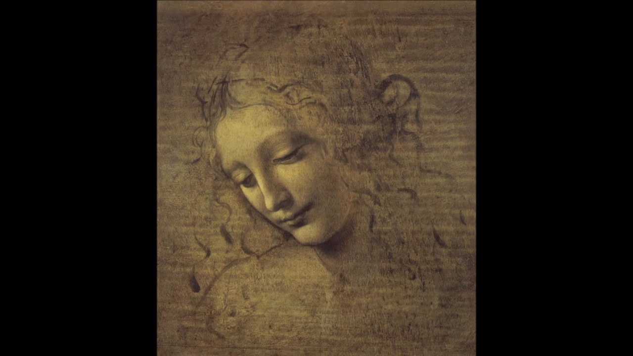 Head of a Woman (Da Vinci)