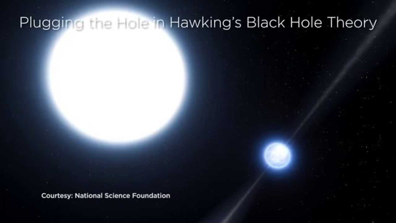 Black Hole Information Paradox
