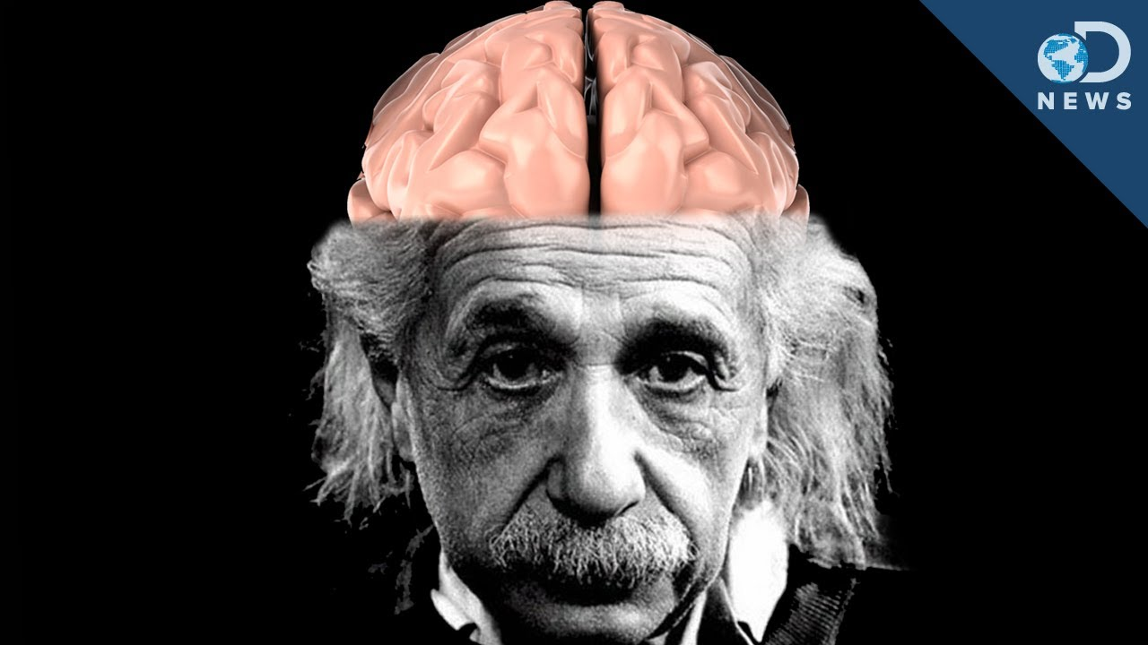 Albert Einstein - Brain