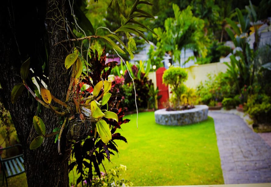 Heritage Inn's garden