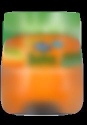 Tarrito Puré Ecológico Fruta y Zanahoria