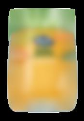 Tarrito Puré Ecológico Zanahoria y Salmón