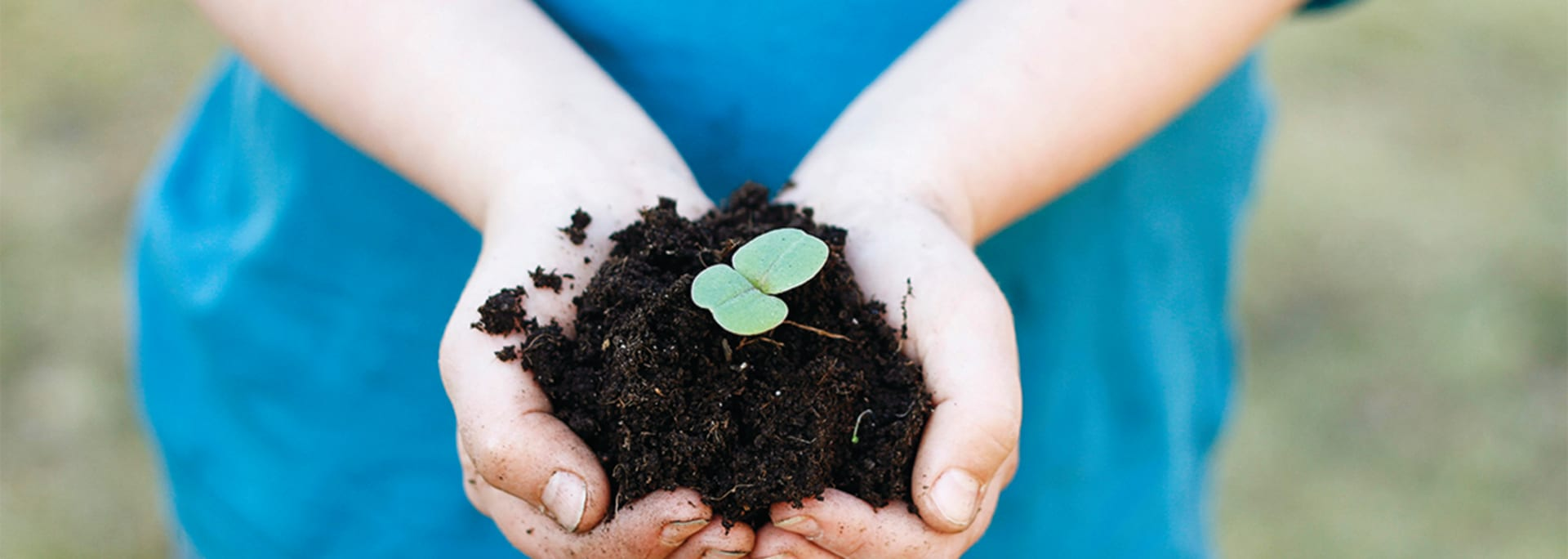 Barnhänder håller i jord med växt