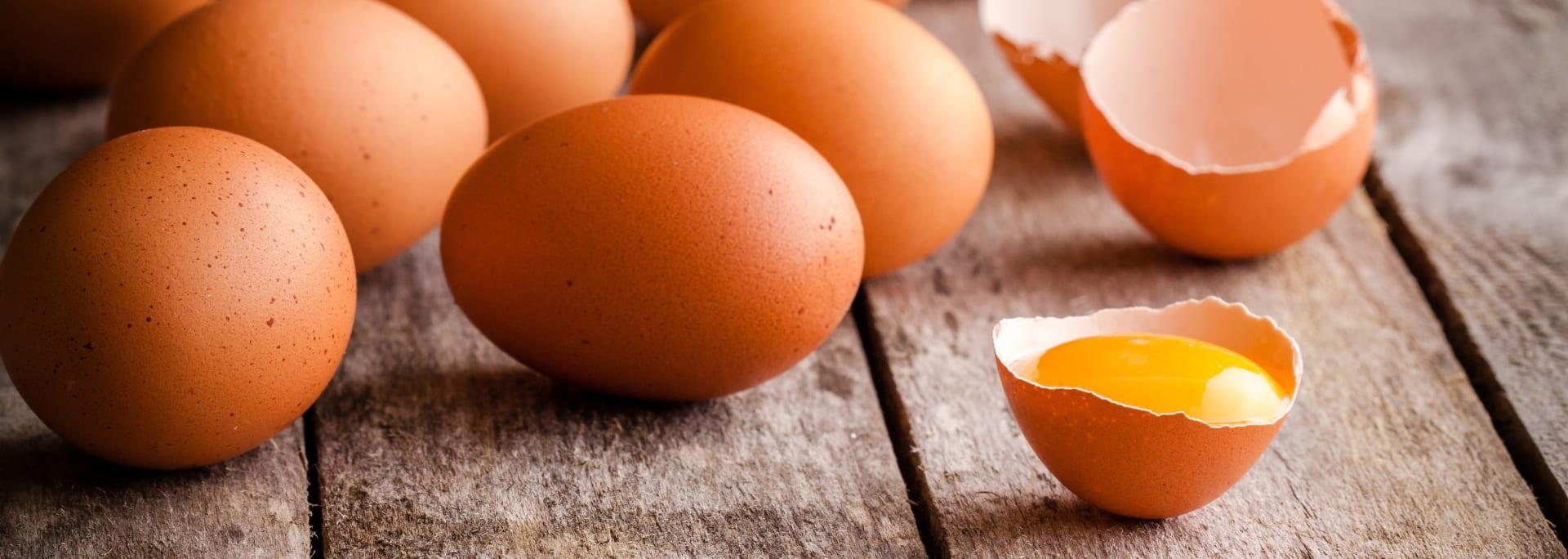 la introducción del huevo