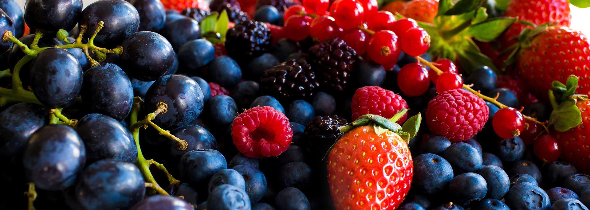 Kwaliteit van ons fruit