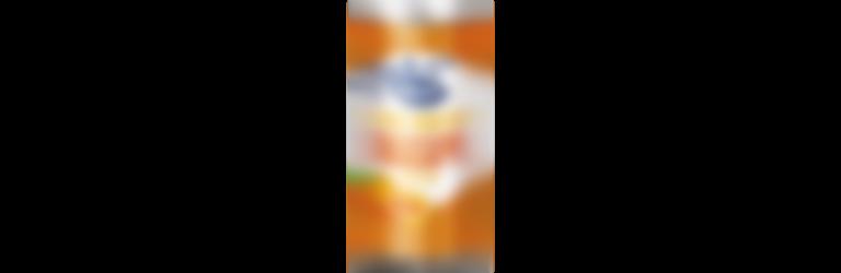 Sinaasappelsap blik 250ml _1600x1600.png