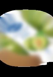 Envase Premium Confitura Ciruela