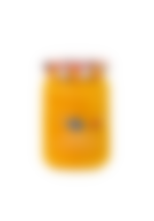 temporada mango_nueva