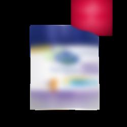 premium 3 PDA