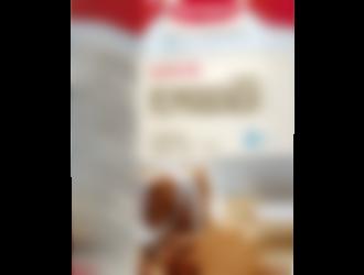 Semper Pepparkakor, glutenfria & FODMAP-Friendly pepaprkakor