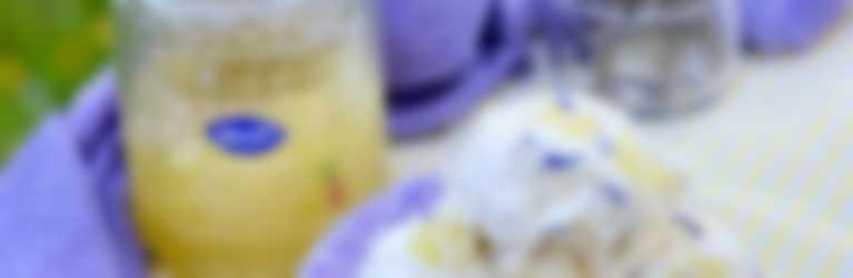 Biscogelato con confettura Hero Ananas di Stagione
