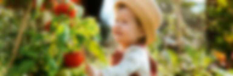 imagen-portada-bebe