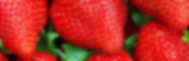 fragole-fruttadistagione