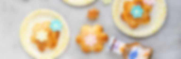 Mini appelflappen header
