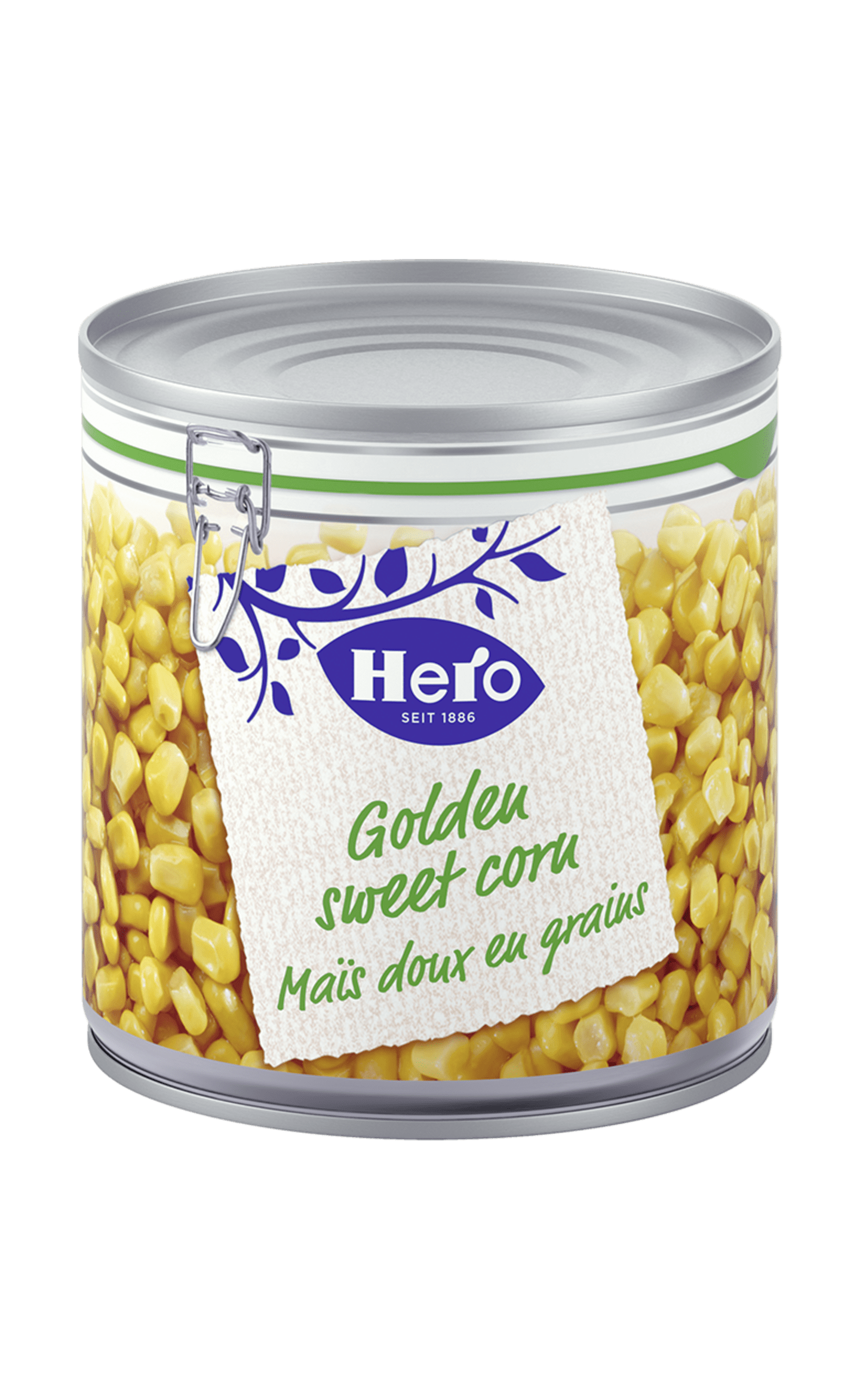 Golden Sweet Corn | Hern