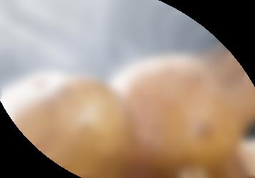 Dampfende Kartoffeln im Sonnenlicht