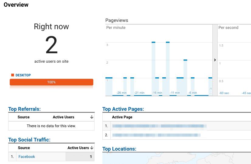 Google Analytics Real-Time Views.