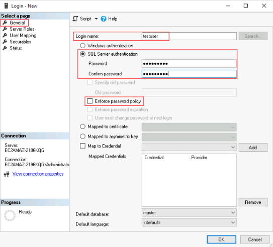 Setting up the User in SQL Server.