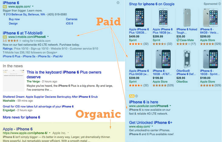 Paid and Organic Search Results