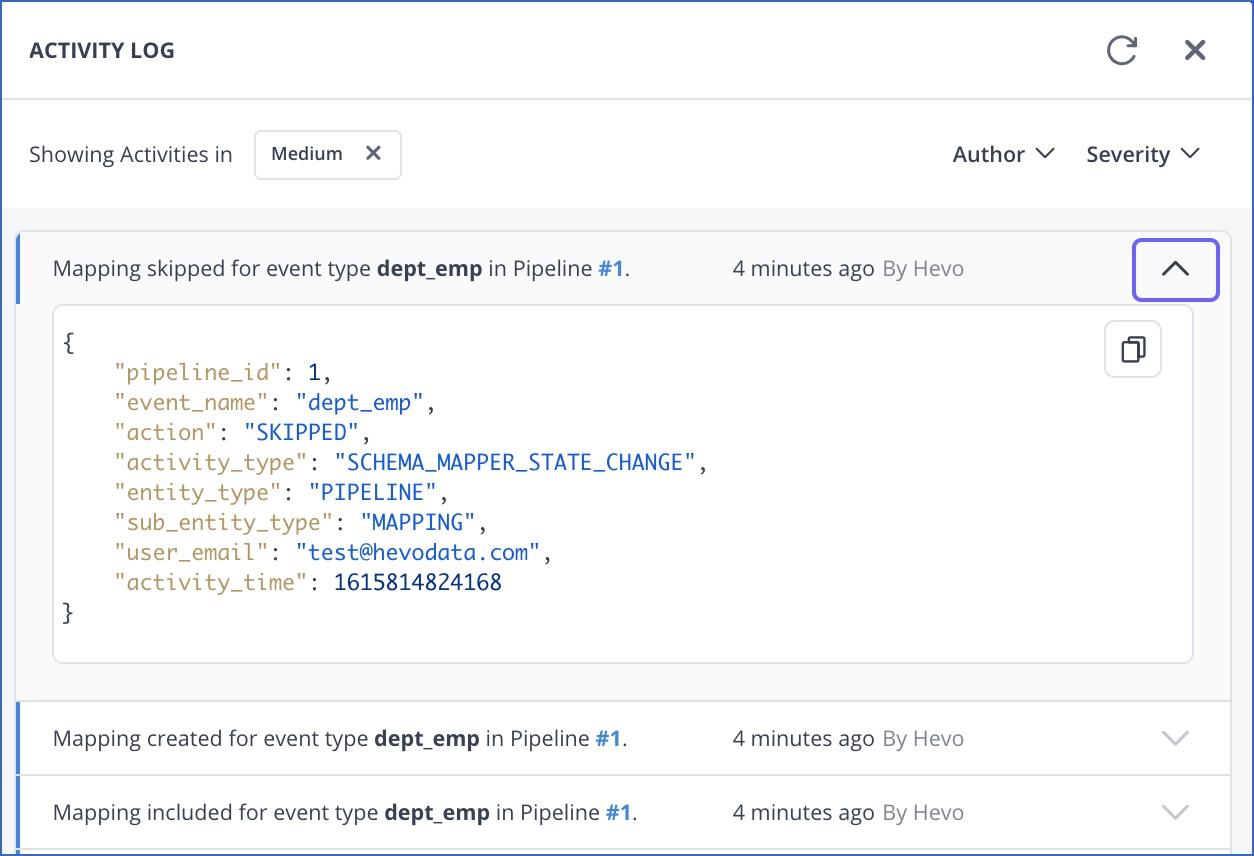 View Schema Mapper activity log