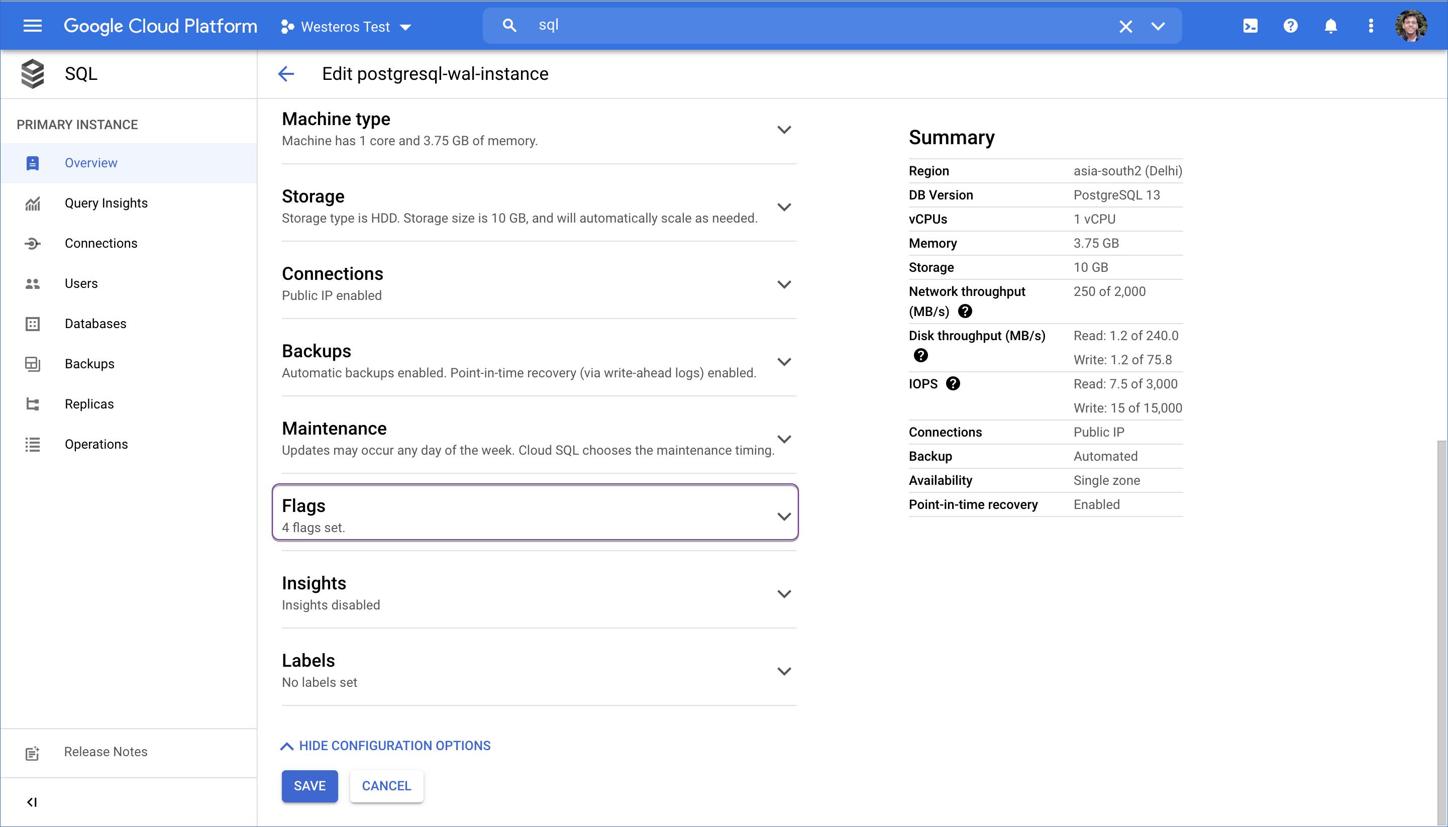 Google Cloud PostgreSQL flags section