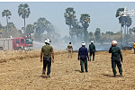 Nearly 5 hectares of rice fire was...