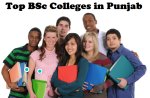 Top BSc Colleges in Punjab