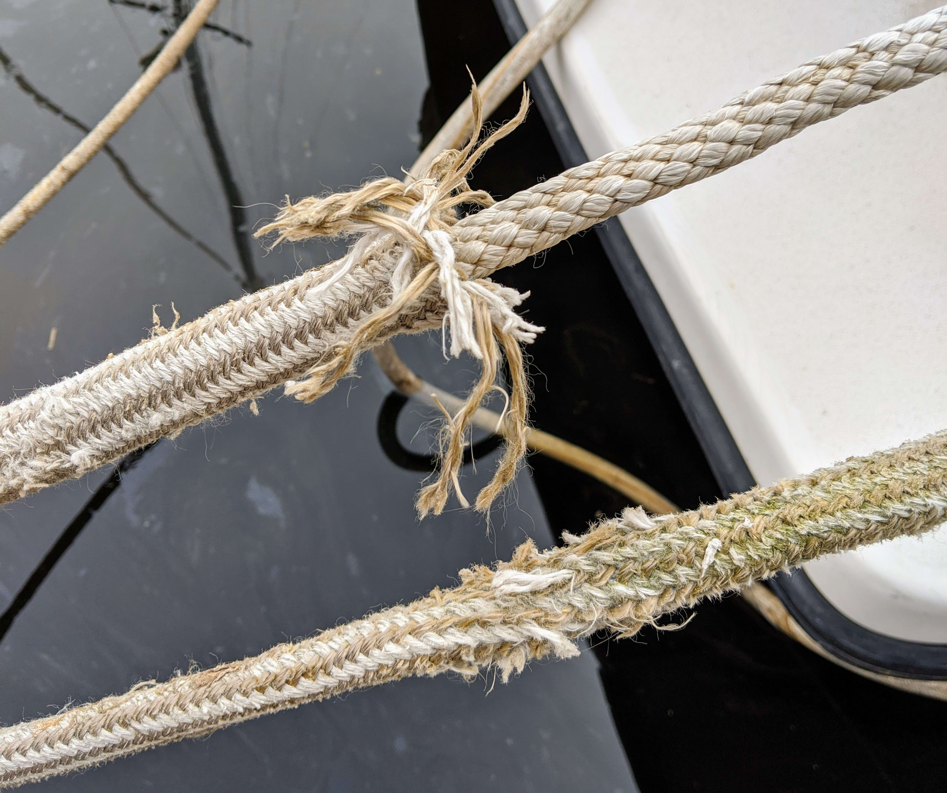 Severely chafed dock lines