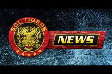 SCL Tigers machen Schritte vorwärts