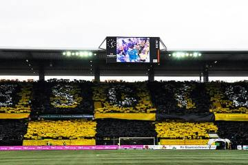 YB-Duo leihweise zum FC Schaffhausen
