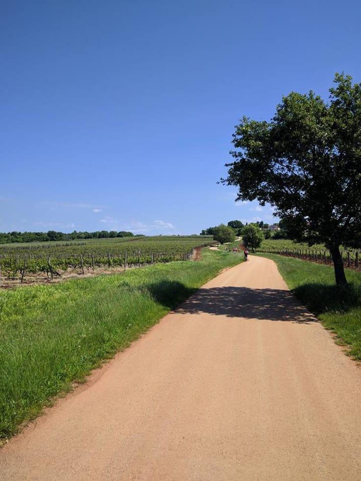 Cykling på den kroatiska landsbygden