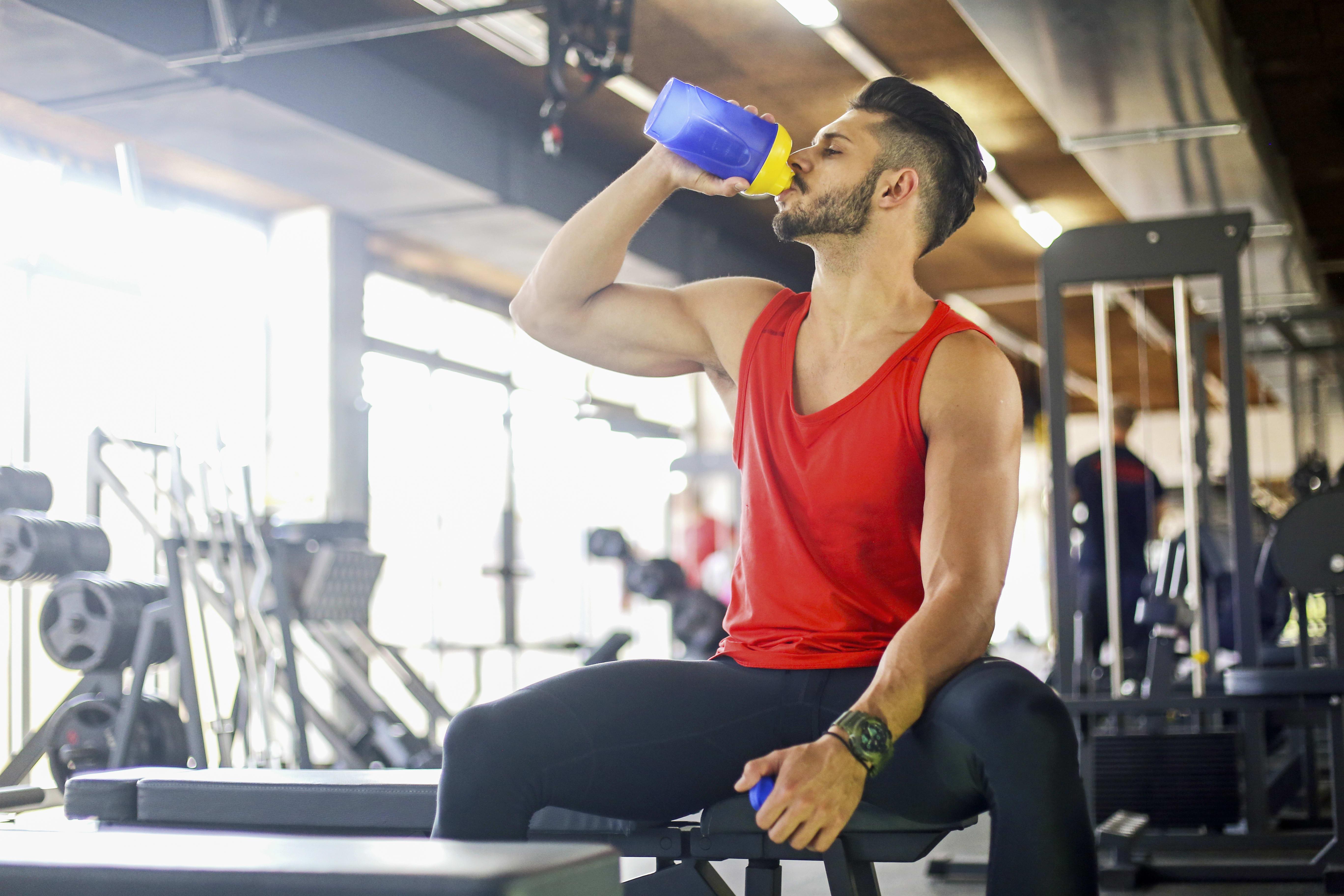 vilket proteinpulver efter träning