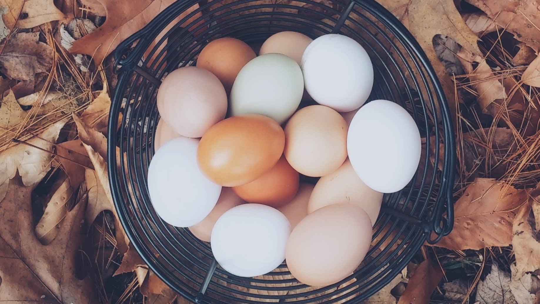hur mycket kolesterol innehåller ägg