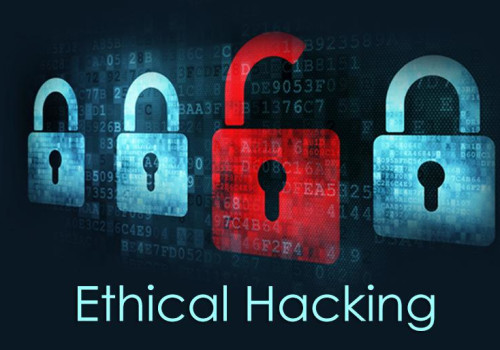 Hands On Penetration Testing and Ethical Hacking Training Course