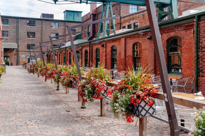 Scenic Toronto Night Tour image