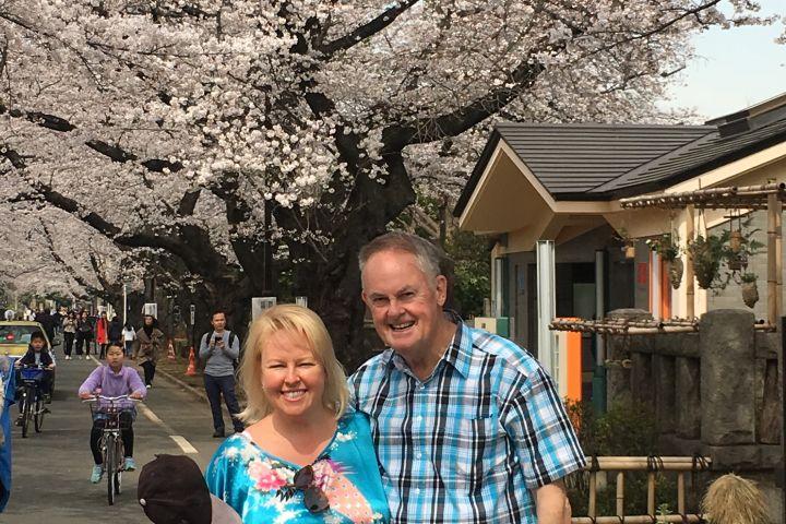 Tokyo Spring Daytime (Cherry Blossom) Food Tour image