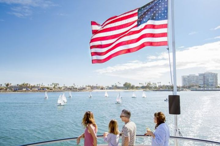 San Diego One Hour Harbor Cruise and Sea Lion Adventure image
