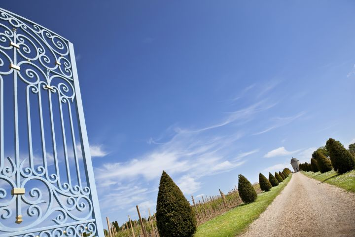 Three Major Wine Regions in a Day Full Day Trip From Bordeaux (private) image