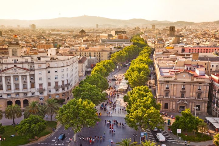 Private Full Day Highlights Tour: Best of Vibrant Barcelona image