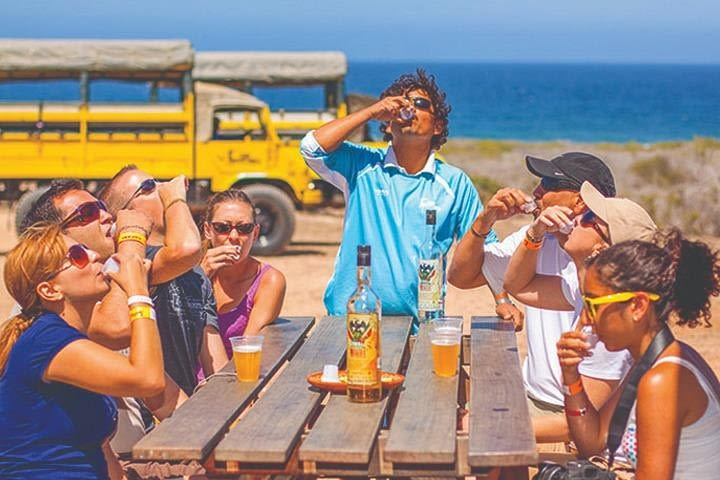 Desert & sea, Camel Safari tour in Los Cabos with lunch image
