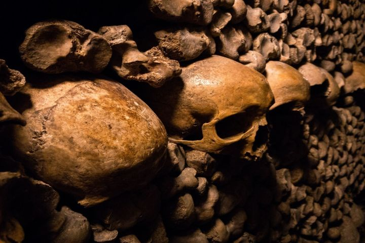 The Catacombs of Paris (Private Tour) image