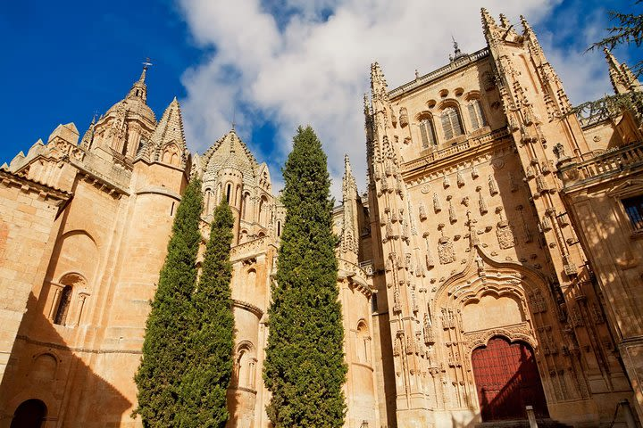 Private Tour to Avila and Salamanca from Madrid image