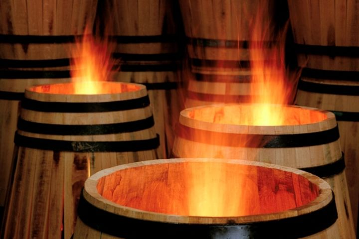 Family Friendly Tour to the Médoc Full Day Trip From Bordeaux (private) image