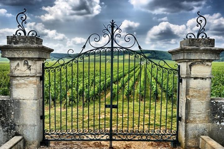 Saint Emilion Wine Tour Full Day Trip From Bordeaux (shared) image