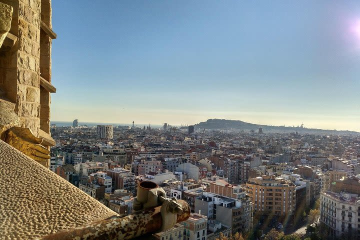 Barcelona Shore Excursion: Early Access to Sagrada Familia image