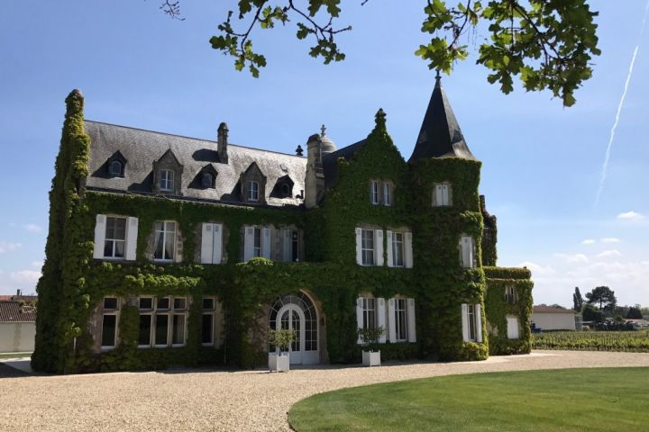 90+ point Left Bank Wine Tour Full Day Trip From Bordeaux (private) image